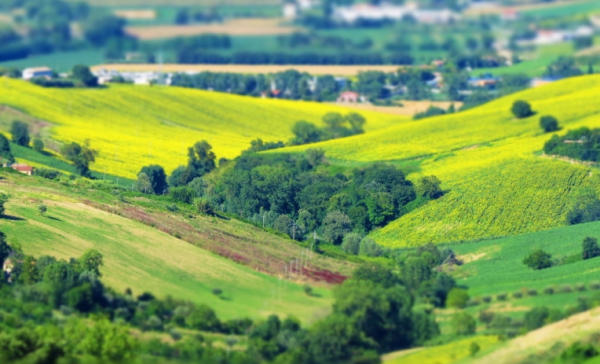 """CNA Trentino Alto Adige: """"Siamo con gli studenti, serve un nuovo modello di sviluppo. Artigiani e piccole imprese pronti a cogliere la sfida per la crescita"""""""